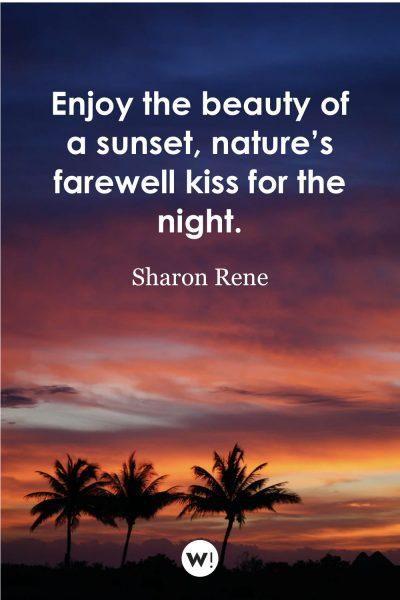 Enjoy the beauty of a sunset, nature's farewell kiss for the night