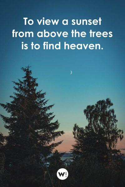 To view a sunset from above the trees is to find heaven