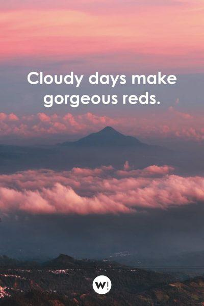 Cloudy days make gorgeous reds