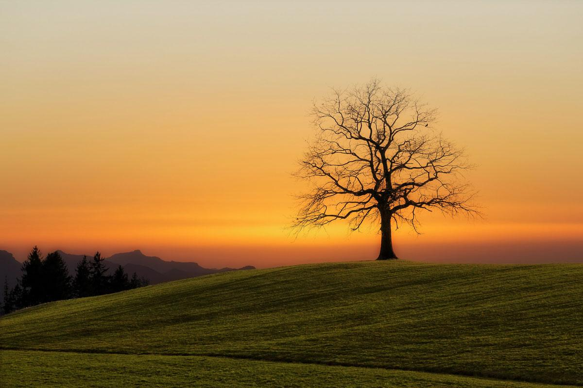 nature sunset quotes and sunset sayings